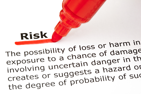 Business Risk Assessment by David McNamee